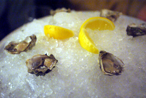 Iced Kumamoto Oysters