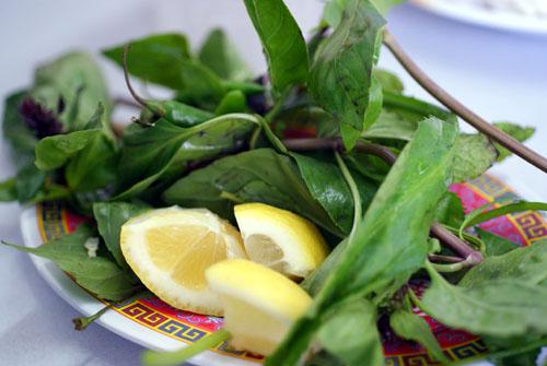 Thai Basil, Sawtooth, Cilantro, Mint, Lemon