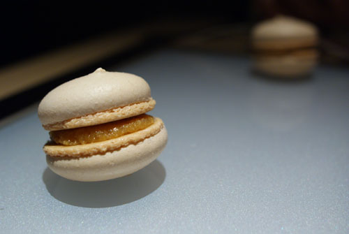 Salted Caramel and Brown Butter Macarons